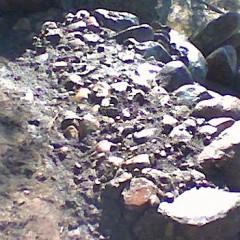 Kivihiekka levitetty ja ajettu rakoihin vedellä.