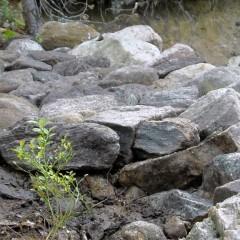 Taustan kivien yläpinta on muutaman sentin alempana kuin reunakivien huiput.